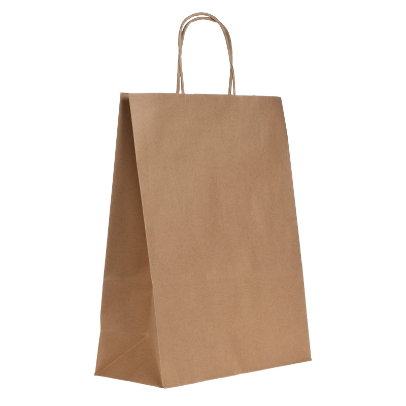 plain brown paper bags with handles