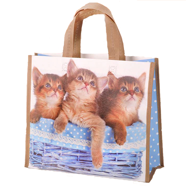 http://printed-bags.net/uploads/DOS_cats_2_672.jpg